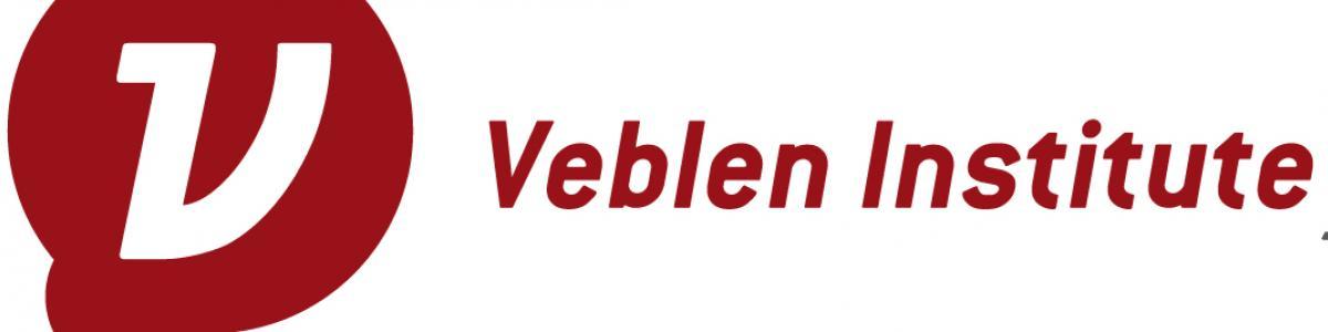 Institut Veblen banner