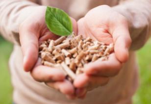 Développement durable - économie alternative